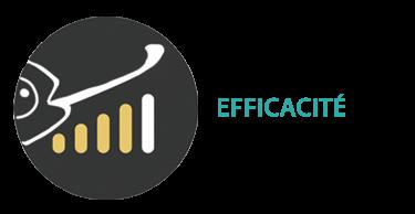 Efficacité : Toutes les prestations comprennent: 3 pistes de réflexion présentées, 3 échanges de modification sur 1 proposition choisie jusqu'à validation du projet final (pour plus d'aller-retour: devis supplémentaire et une gestion de temps plus longue).
